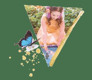 driehoek-vlinder